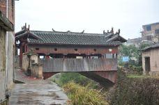 庆元古桥-庆元-洁1500670761