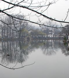 太平游记图文-【游记】黟县古村落.秋色