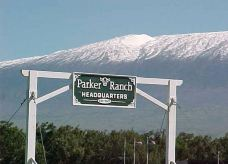 帕克牧场-夏威夷-300****590