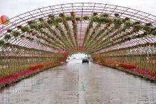 海拉尔农业发展园区-海拉尔区-得了处女座病的天蝎座