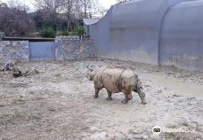 Faruk Yalcın Hayvanat Bahcesi ve Botanik Parkı-达卡