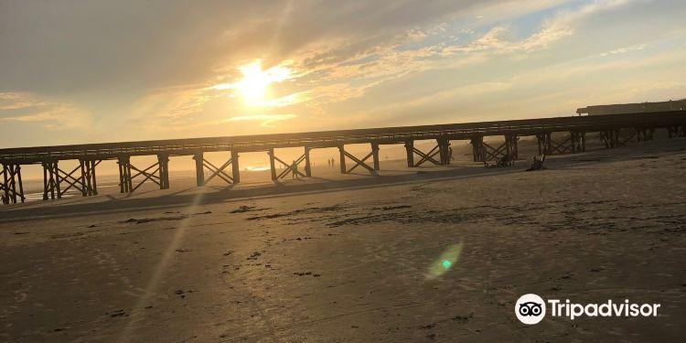 棕榈岛图片