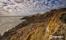 Strangford Lough-北爱尔兰