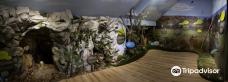 Eco-museum of the Pivka intermittent lakes-波斯托伊纳