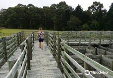Plett Puzzle Park-Greater Plettenberg Bay